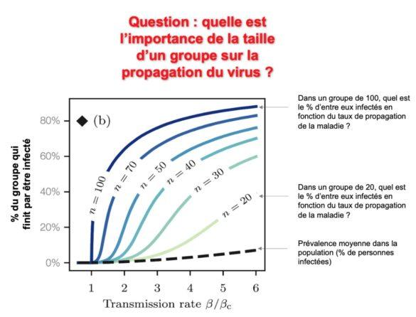 Quelle est l'importance de la taille d'un groupe sur la propagation du virus ?